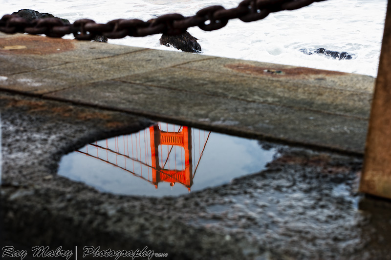 GGB in a water puddle